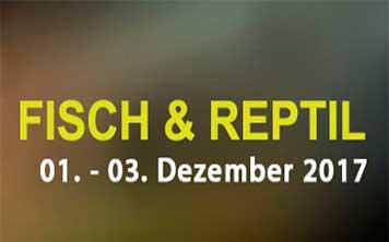 Fisch & Reptil 2017 Sindelfingen